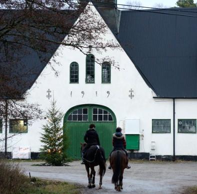 stallplats hos Herrhamra Hästliv